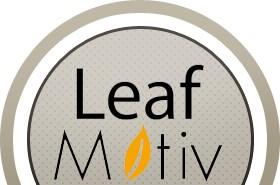 Leaf Motiv